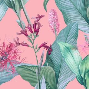 Botanist's Garden on Pink 150