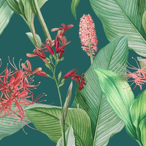 Botanist's Garden on Teal 150
