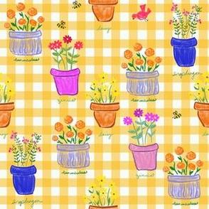 Happy Pots - Sunshine Gingham