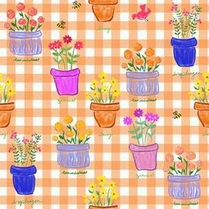 Happy Pots - Coral Gingham