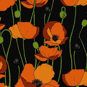 Orange poppy repeat black