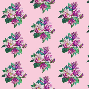 Pink pastel flowers