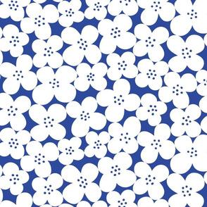 petit fleurs bleues de Henri