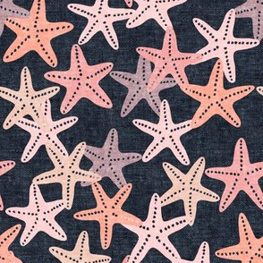 Starfish - pink on blue - summer beach nautical - LAD19