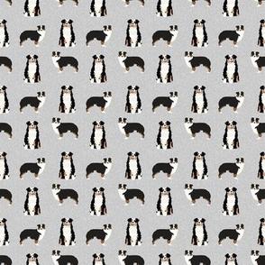 TINY - aussie tri dog fabric quilt coordinate