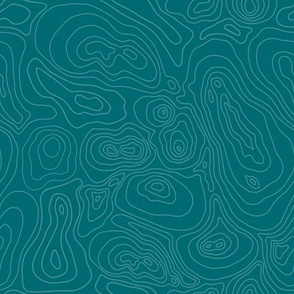 Topographic Map-Blue