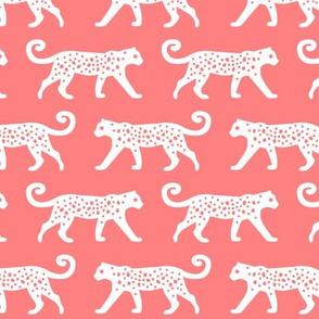White Leopards on Coral