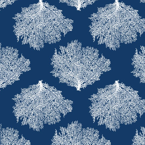Shibori Inspired Fan Coral