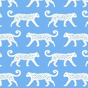 White Leopards on Blue
