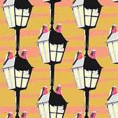 Lamplight Galahs - pop art (ochre)