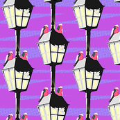 Lamplight Galahs - pop art (violet)
