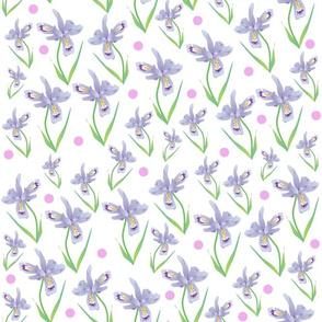 Wild Iris Lace - white #2