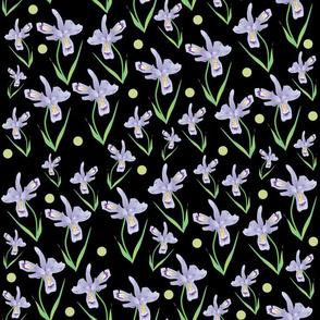 Wild Iris Lace - black #6