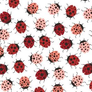 All Over Modern Ladybugs - White background