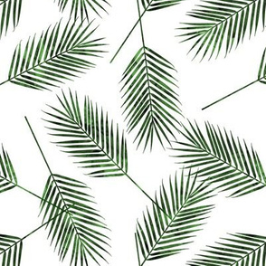 Palm leaves - green - summer - LAD19