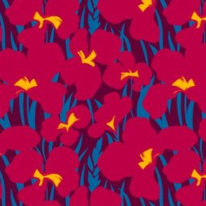 Red Canna Lilies on bordo background