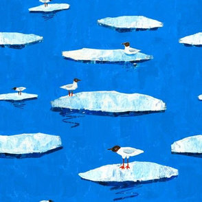 Seagulls swimming on ice floes