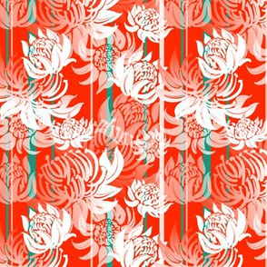 Pattern with Telopea flowers on red background