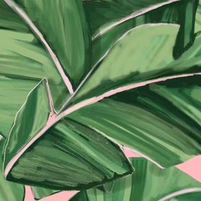 Banana Palms on pretty pink