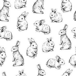 Sketched Rabbits on White Background