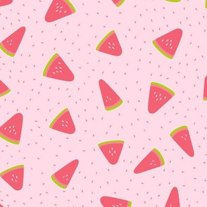 Summer watermelon on pink background