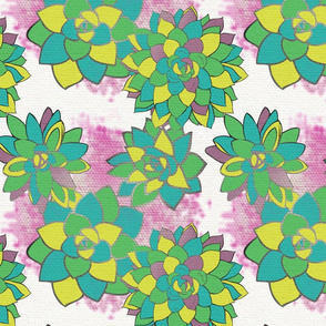 Pop Art Succulents