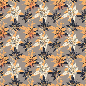 flower loach 12