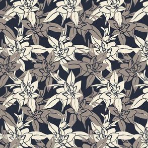 flower loach 13