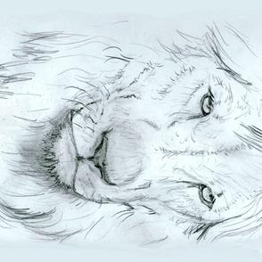 Custom Lion Portrait for Minky