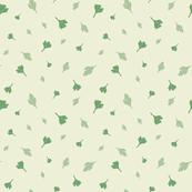 Parsley and coriander C1