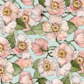 Painted Pink Anemones