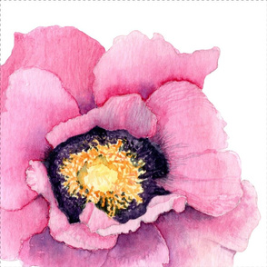 Pink Water Color Poppy Throw Pillow