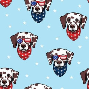 Dalmatian (brown spots) with sunnies - patriotic - blue with stars - LAD19