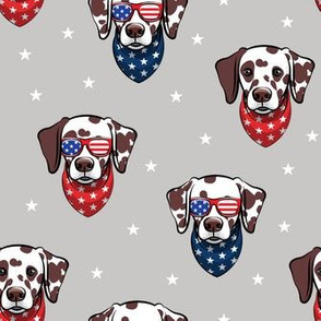 Dalmatian (brown spots) with sunnies - patriotic - grey with stars - LAD19
