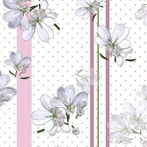 White Coriander Flowers | Stripes + Gray Dots