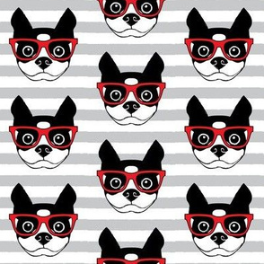 hipster boston terrier with red glasses