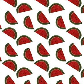 classic red watermelon on milk