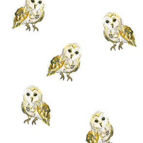 Watercolour Owls on White