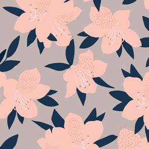 Azaleas on gray