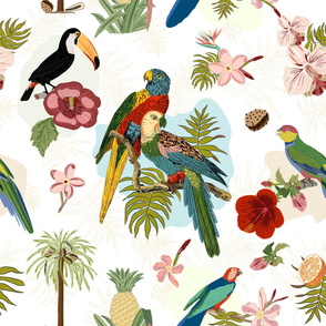 Parrots & Tropical