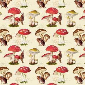 Mushroom Meadows: Natural