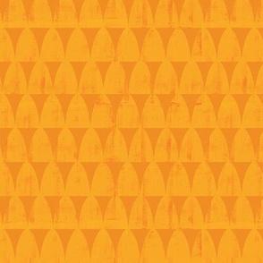 Protea Orange