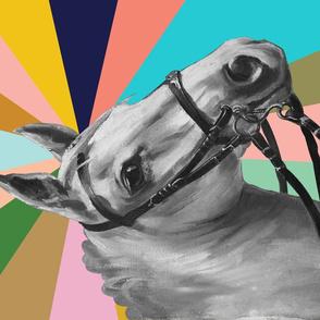 Pinto Tea Towel* (Kaleidoscope) || horse equestrian rainbow starburst stripes western