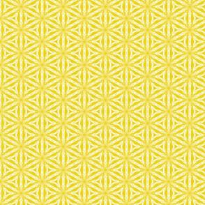 Star Lattice-Marigold