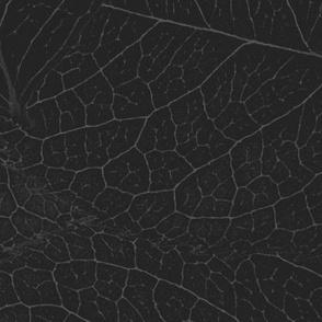 leaf pattern Dark Sansa charcoal