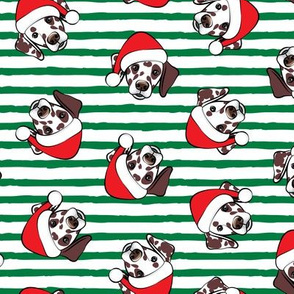 Dalmatians with Santa hats - Christmas dogs - green stripes (brown spots) - LAD19