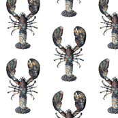 Lobster Brocade