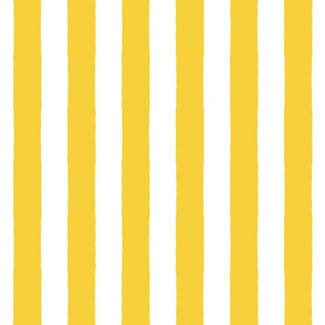 Broad Stripes GOLD