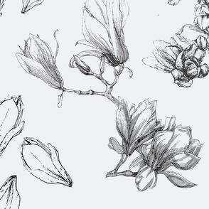 magnolia-pattern-flowers