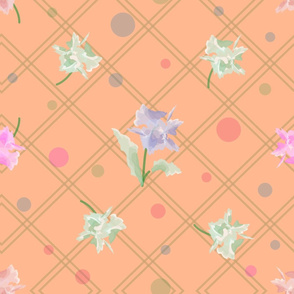 Peachy carnation
